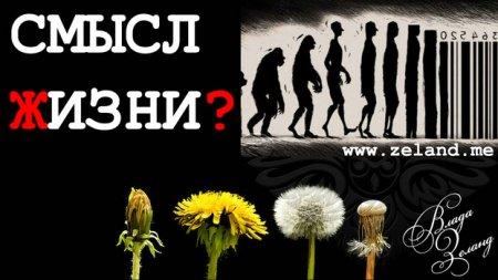 В чем Смысл Жизни? Зачем люди приходят в этот Мир?