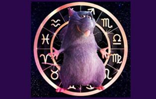 гороскоп для всех знаков зодиака на 2020 год Крысы