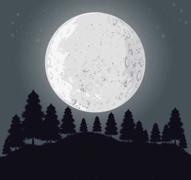 блин это не солнце, это луна
